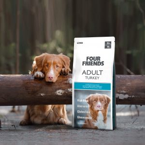 FourFriends Grain Free Venison och en golden retriever